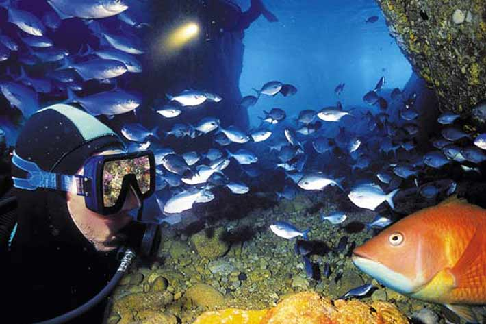 Explore the underwater kingdom